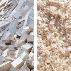sigro-biomasa